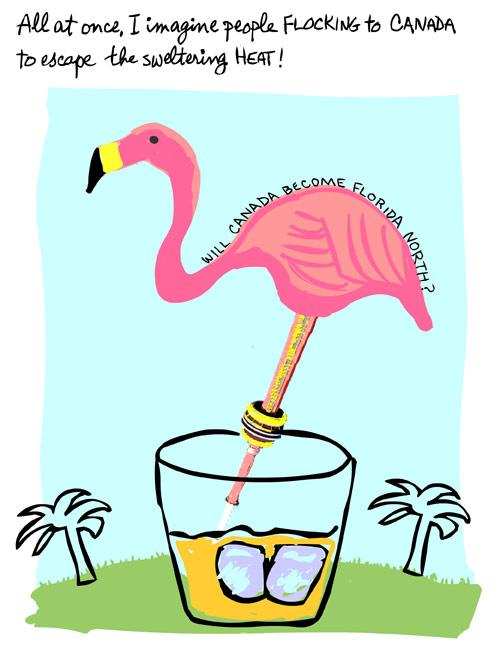 illustration of flamingo by franke james