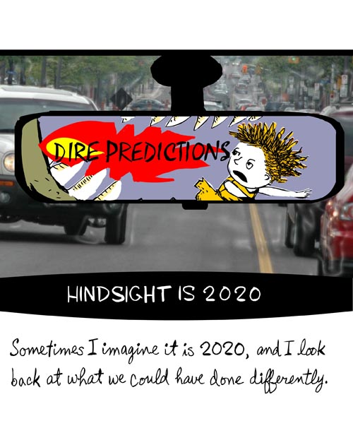 franke james illustration of 2020 hindsight