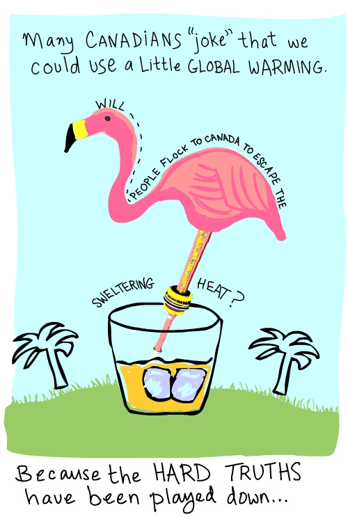 Flamingo Florida north illustration by Franke James