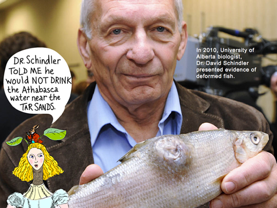 In 2010, Dr. David Schindler presented evidence of deformed fish. Schindler told me he would NOT drink the Athabasca River water near the tar sands. Photo of Dr David Schindler by Ed Kaiser, Edmonton Journal