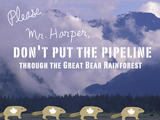 Please Mr Harper Don't Put the Pipeline Through the Great Bear Rainforest. Photo Ian McAllister, Pacific Wild, type illustration by Franke James