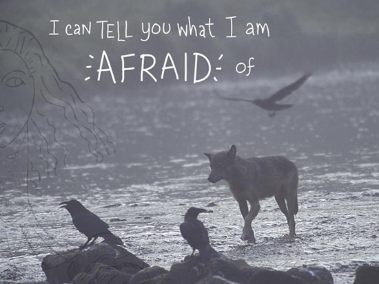 I can tell you what I am afraid of, writing and type-illustration by Franke James, photo by Ian McAllister, Pacific Wild