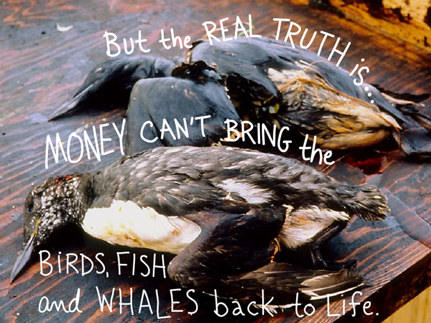 And the real truth is... clean up costs can't bring the birds, fish and whales back to life. Writing Franke James; Photo of oiled Birds killed as a result of oil from the Exxon Valdez spill. Photo courtesy of the Exxon Valdez Oil Spill Trustee Council; Wikimedia.