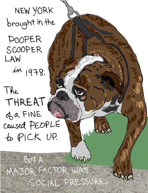 Dog illustration from The Real Poop on Social Change by Franke James;