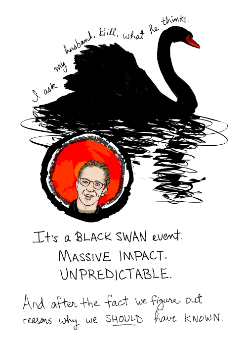 Black Swan event drawing from 12,000 Sitting Ducks by Franke James
