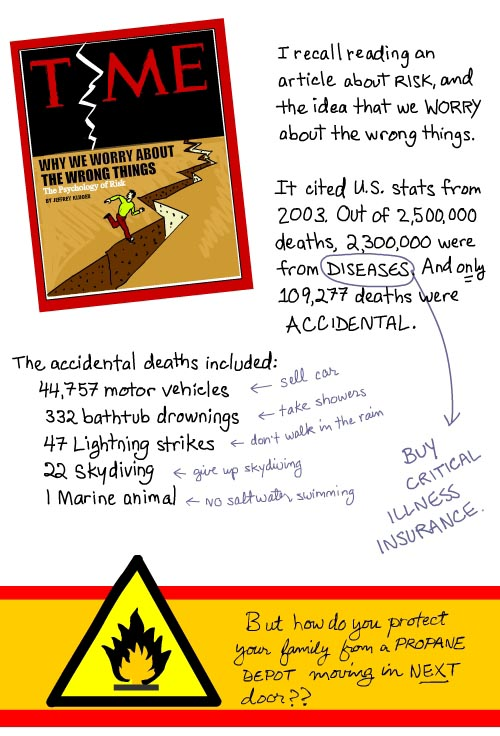 Time Mag cover about Risk Drawing from 12,000 Sitting Ducks by Franke James