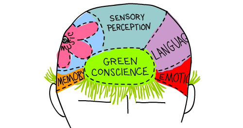 green conscience brain Illustration by Franke James