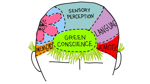 green brain illustration by Franke James