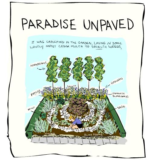 Paradise Unpaved illustration by Franke James;