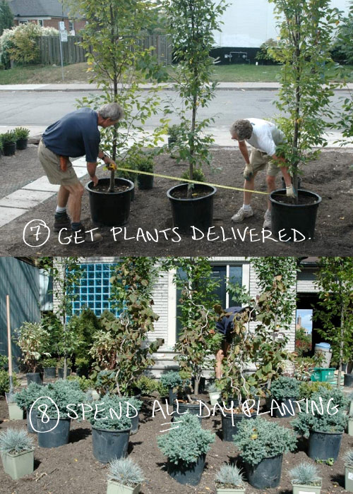 planting photo by franke james