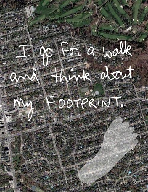 I go for a walk and think about my footprint