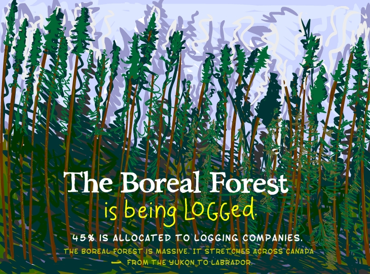 Boreal Forest is being logged, Photo illustration by Franke James
