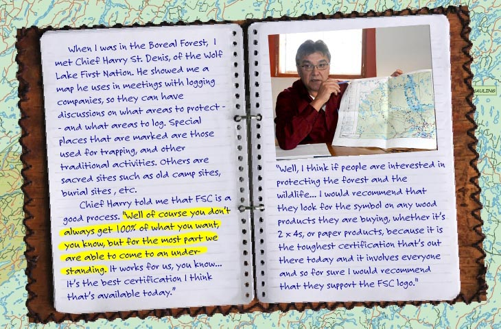 Journal features Chief Harry St. Denis, Wolf Lake First Nation, photo illustration by Franke James