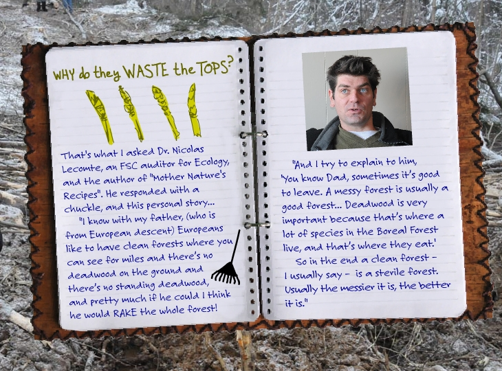Dr. Nicolas Lecomte, SmartWood, FSC auditor for ecology explains why they leave the tops, photo illustration by Franke James