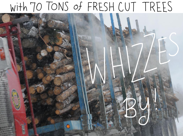 with 70 tons of fresh cut trees whizzes by, Photo illustration by Franke James