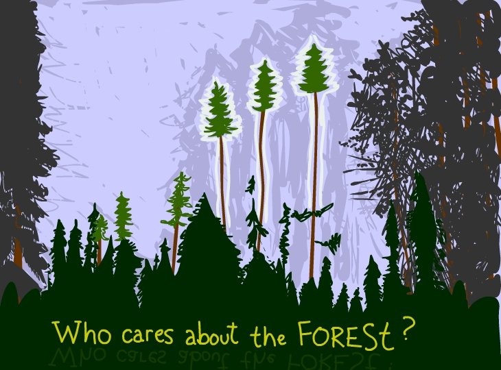 Drawing of Boreal Forest by Franke James