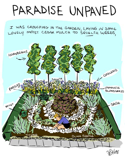 illustration by franke james of green driveway and garden