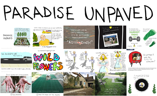 snapshots of Paradise Unpaved visual essay by franke james
