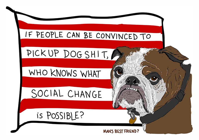 The Real Poop on Social Change illustrated flag by Franke James, 2008-2013