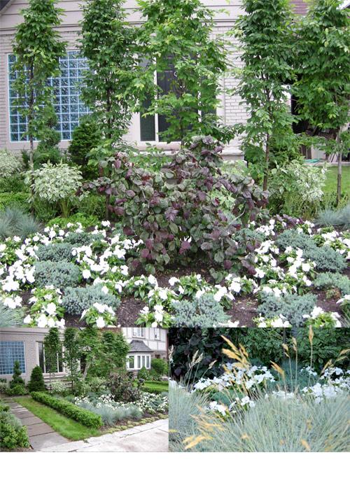 garden photo by franke james